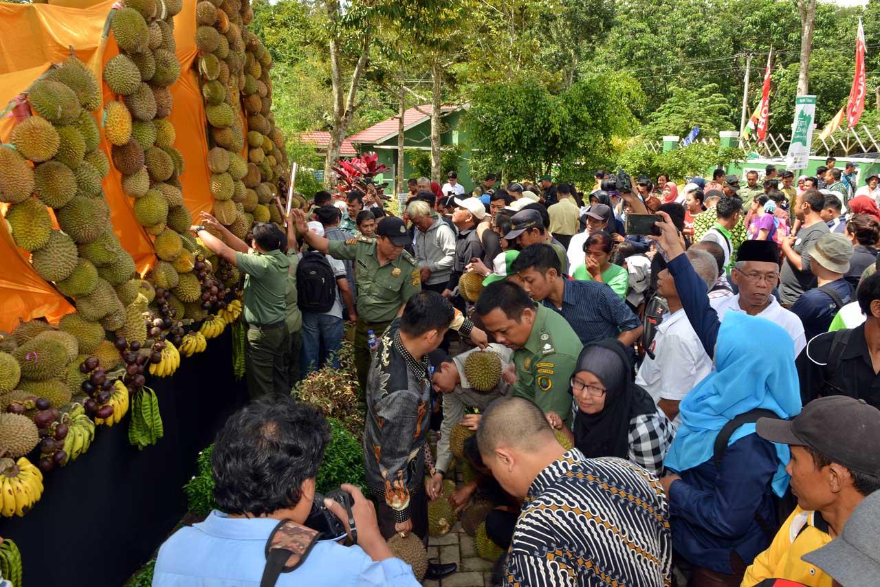 Festival Durian Sumber Agung - Bandar Lampung - 2016 - 4