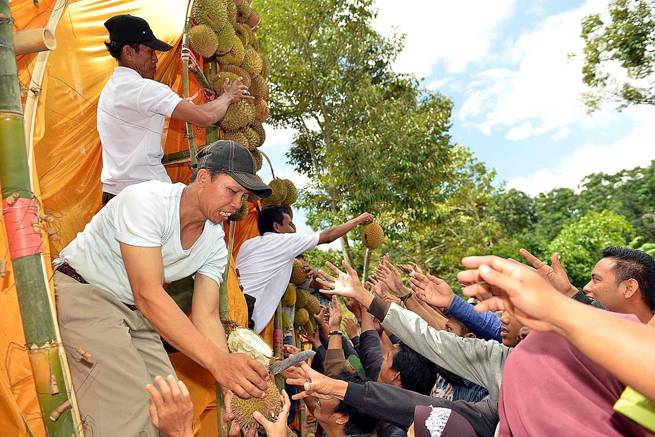 Festival Duren Sumber Agung - Bandar Lampung - 2016 - 6