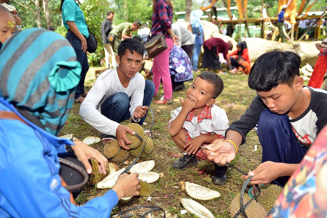 Festival Duren Sumber Agung - Bandar Lampung - 2016 - 8