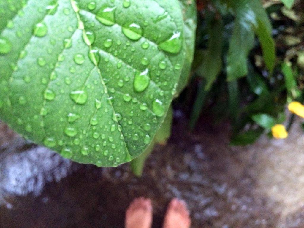 Hujan di bulan juni 2016 - Bandar Lampung - Yopie Pangkey - 1