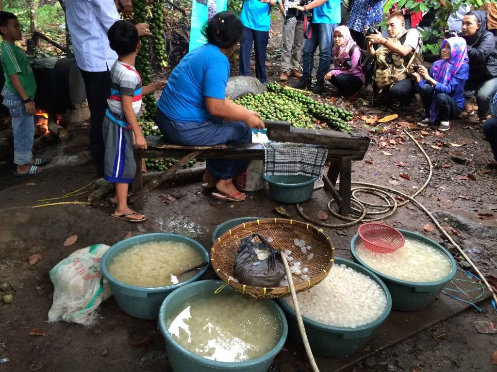 Tahura Wan Abdul Rahman - kolang kaling - Yopie Pangkey - 7