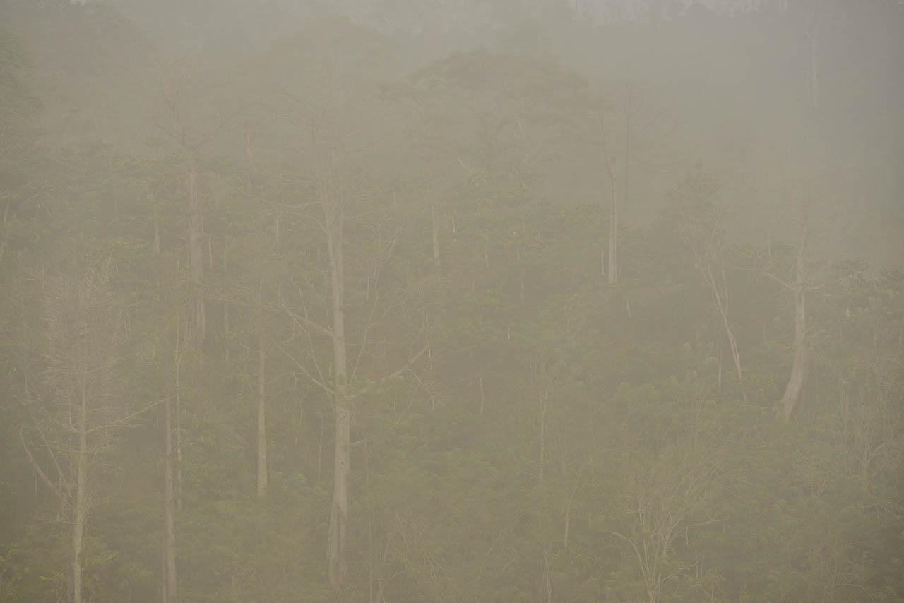 Bukit Bawang Bakung – Lampung Barat – Yopie Pangkey – 2