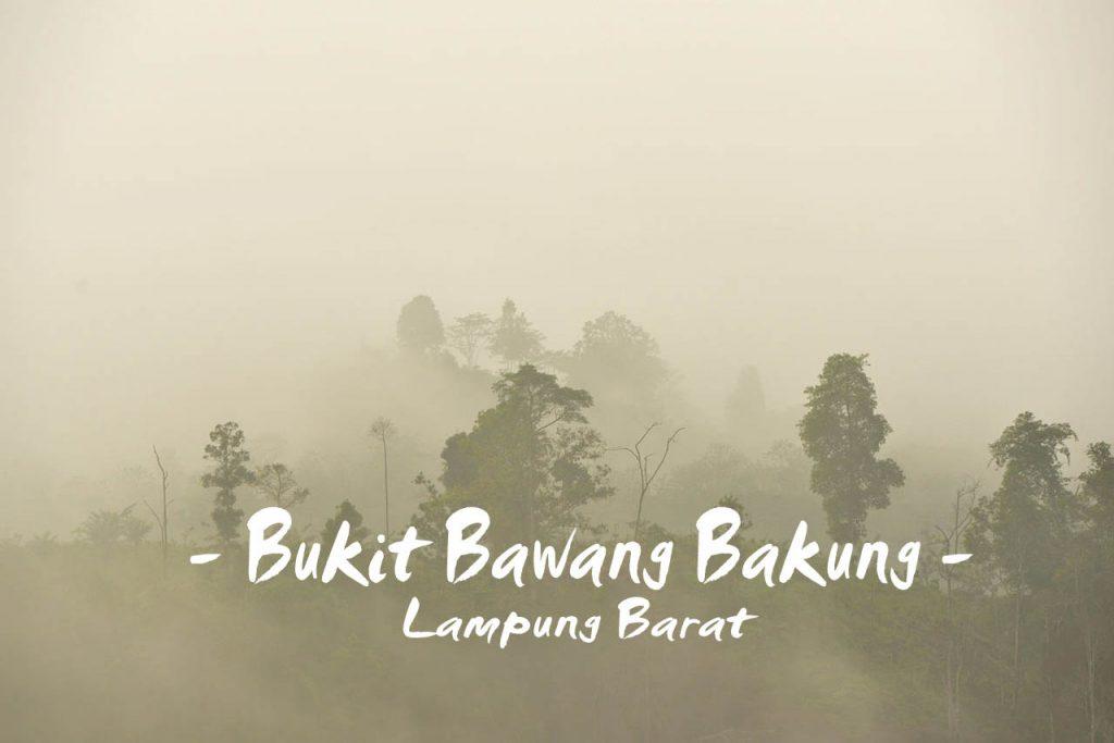 Bukit Kabut Bawang Bakung - Lampung Barat - Yopie Pangkey @