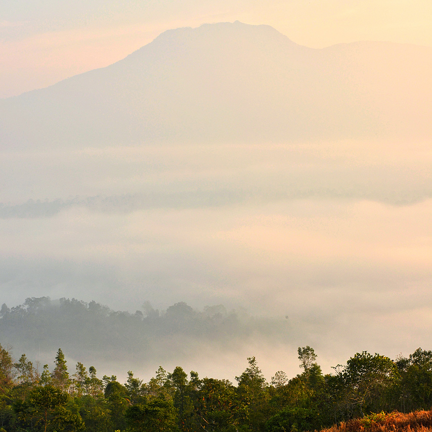 View kabut dari bukit geredai - yopie pangkey