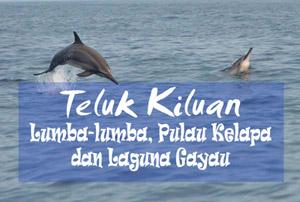 Teluk Kiluan - Lumba-lumba Pulau Kelapa dan Laguna Gayau - Yopie Pangkey