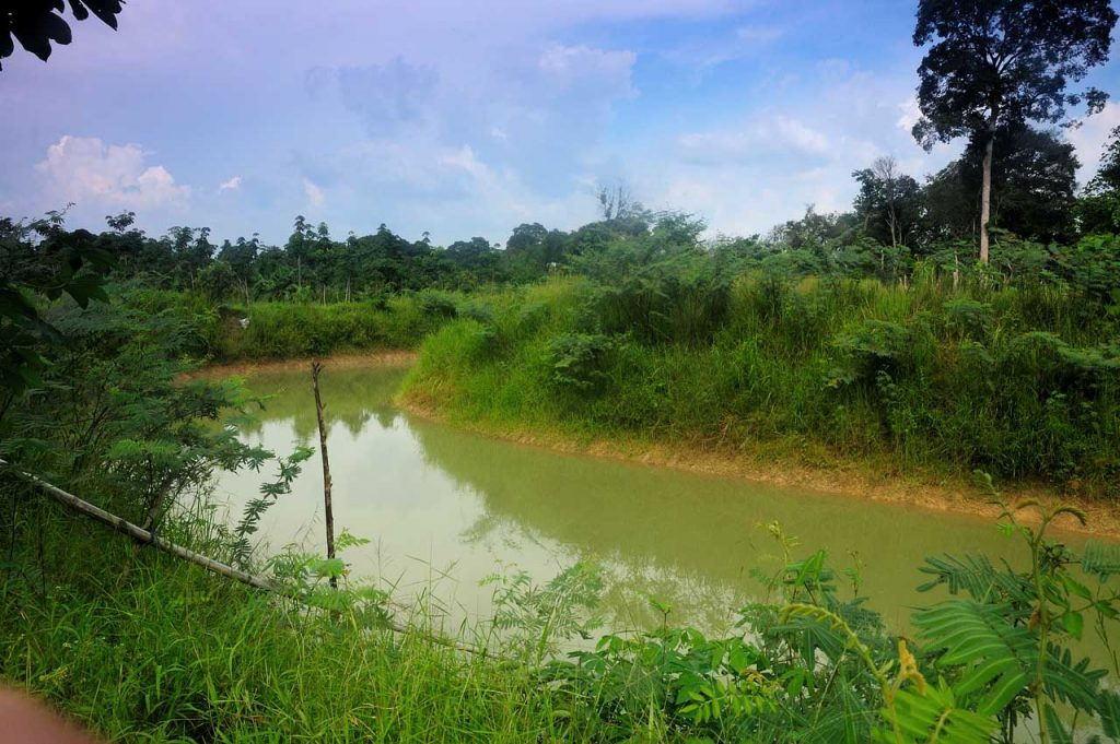Candi Muaro Jambi - tempat wisata di jambi - yopie pangkey - 1