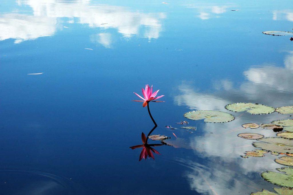 danau dendam tak sudah - objek wisata di bengkulu - yopie pangkey - 5