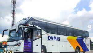 Bus Damri terbaru - Mercedes Benz OH 1626 NG Series - @ezanezandra