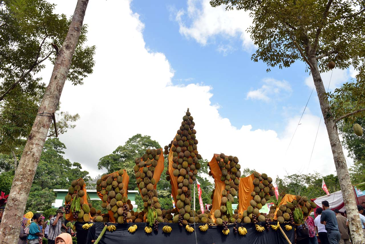 Festival Durian Sumber Agung - Bandar Lampung - 2016 - 2