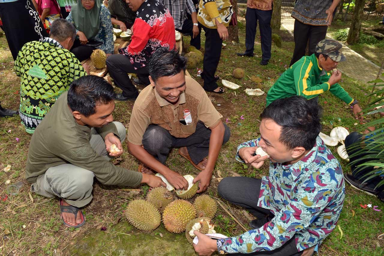 Festival Duren Sumber Agung - Bandar Lampung - 2016 - 5