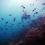 Snorkeling di pulau Kelagian Besar. (Foto: Jaya)