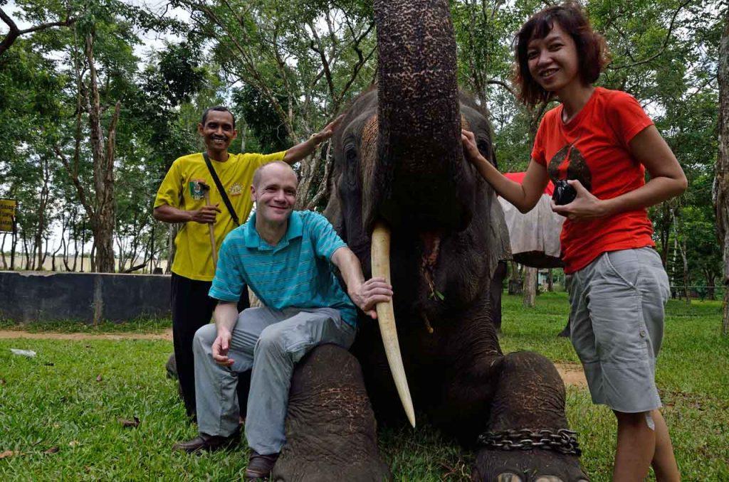 gajah - taman nasional way kambas - yopie pangkey - 8