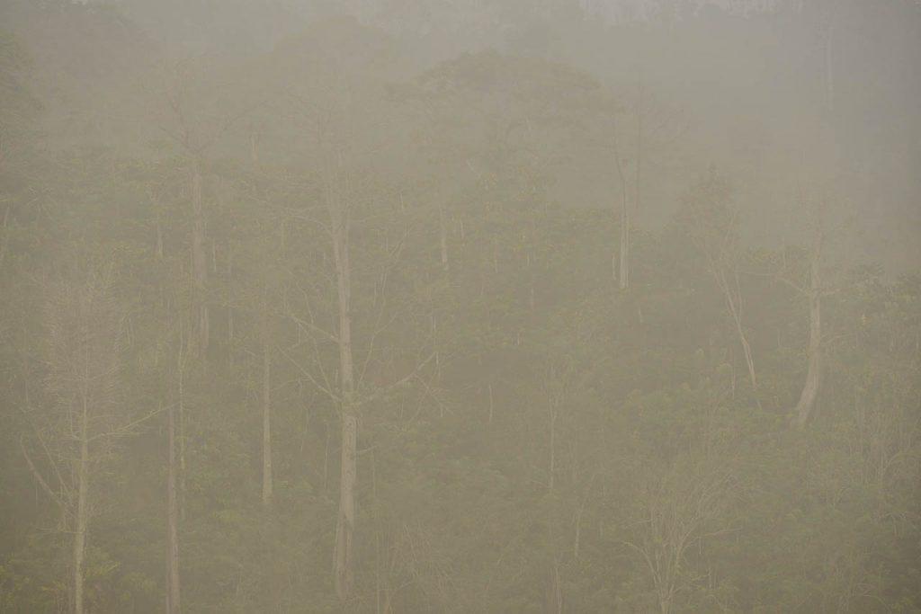 Bukit Bawang Bakung - Lampung Barat - Yopie Pangkey - 2