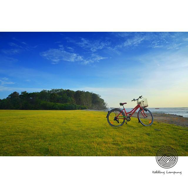 Pantai di ujung landasan - Tambling Wildlife Nature Conservation TWNC - Yopie Pangkey