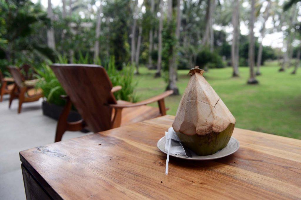 Suak Sumatera Resort - Keliling Lampung - Yopie Pangkey - 6
