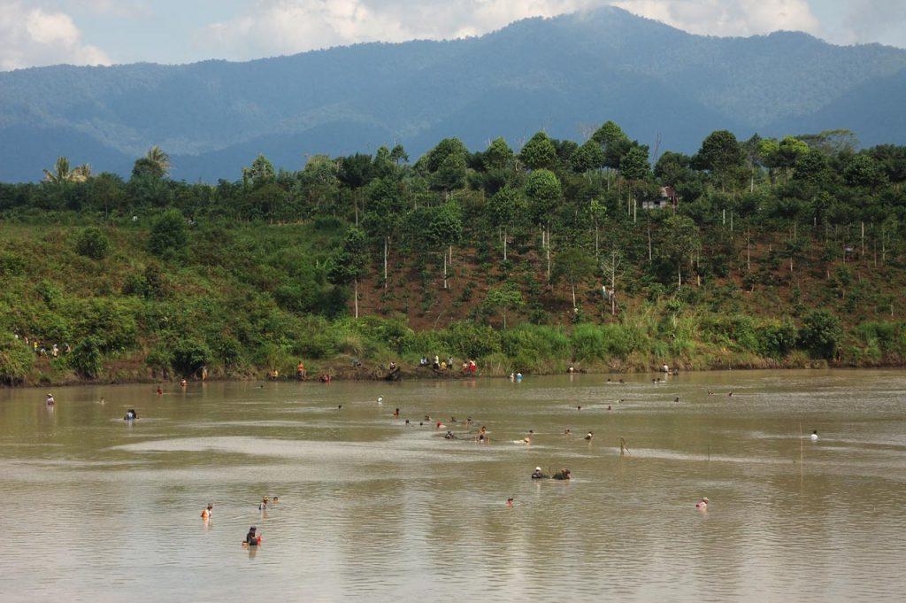 wisata kebun teh gunung dempo - tempat wisata di sumatera selatan - yopie pangkey - 10