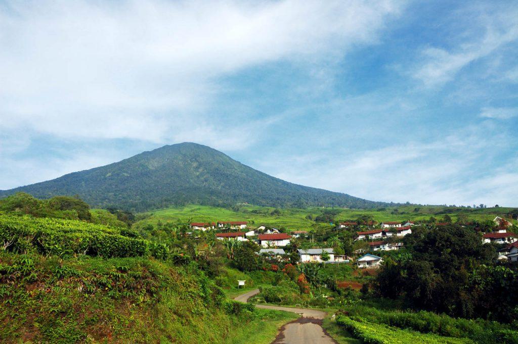 wisata kebun teh gunung dempo - tempat wisata di sumatera selatan - yopie pangkey - 3