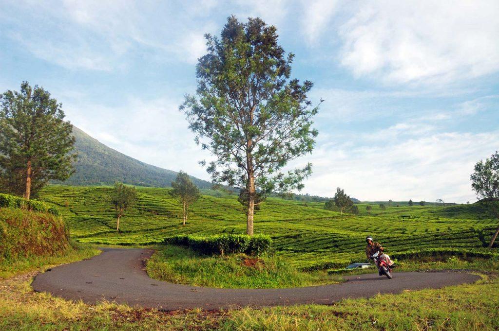 tempat wisata di gunung dempo - tempat wisata di pagar alam - yopie pangkey - 5