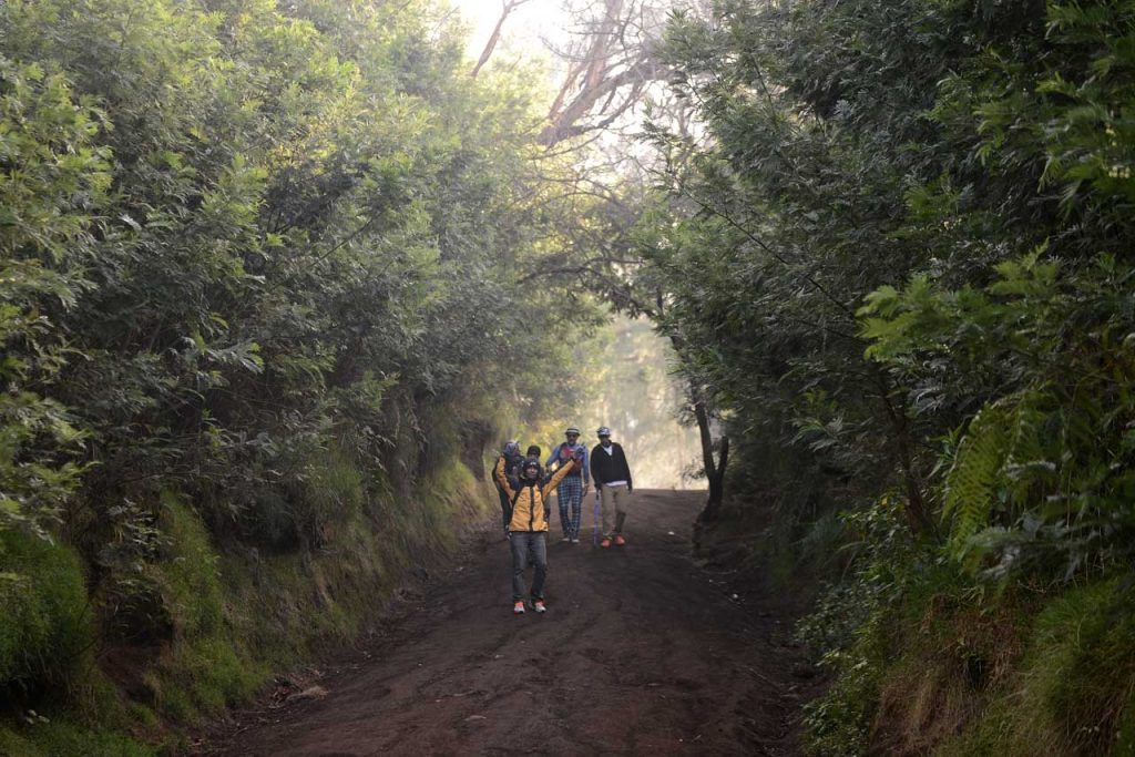 Jalur Pendakian Kawah Ijen - Banyuwangi - Yopie Pangkey - 6
