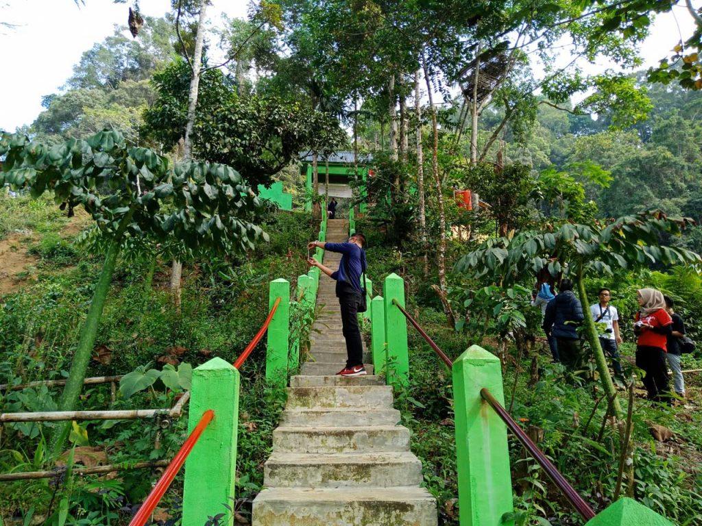 Bunga Bangkai Bengkulu - Taman Konservasi Puspa Langka - Yopie Pangkey 4